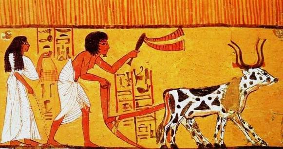 Ploughing-sowing-Thebes