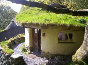 cob-home-living-roof