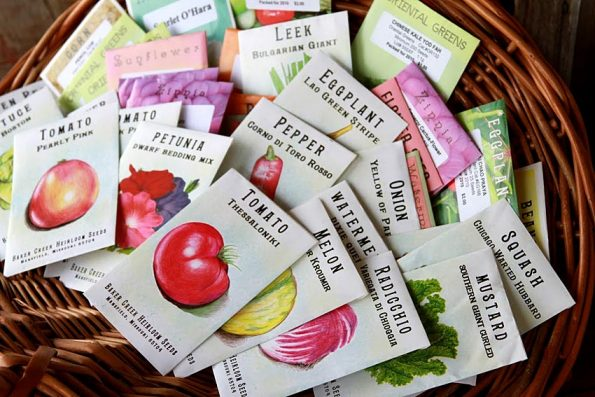 10 Best Companies for Non-GMO Heirloom Seeds