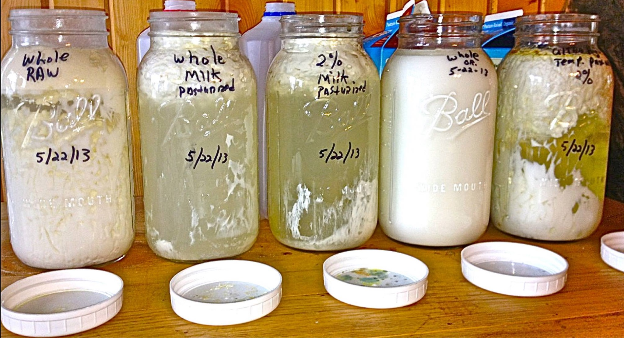 Raw Milk vs. Pasteurized: This is What Happens When You ...