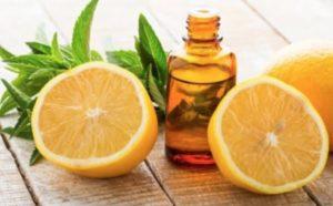 Why Use Lemon Eucalyptus Mosquito Repellents