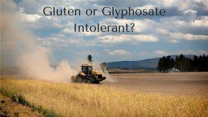 Gluten-or-GlyphosateIntolerant--300x169.