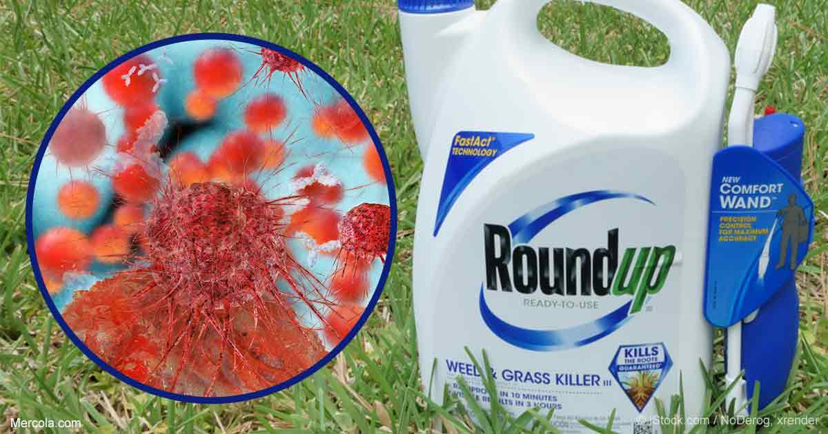Monsanto Paid Google to Bury Unfavorable News, Investgation Reveals