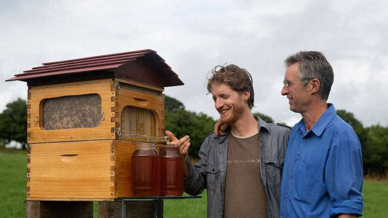 Father and Son Build 50,000 New Beehive Colonies Around the World 1