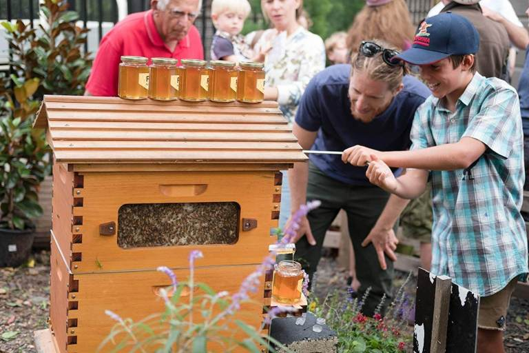 Father and Son Build 50,000 New Beehive Colonies Around the World 4