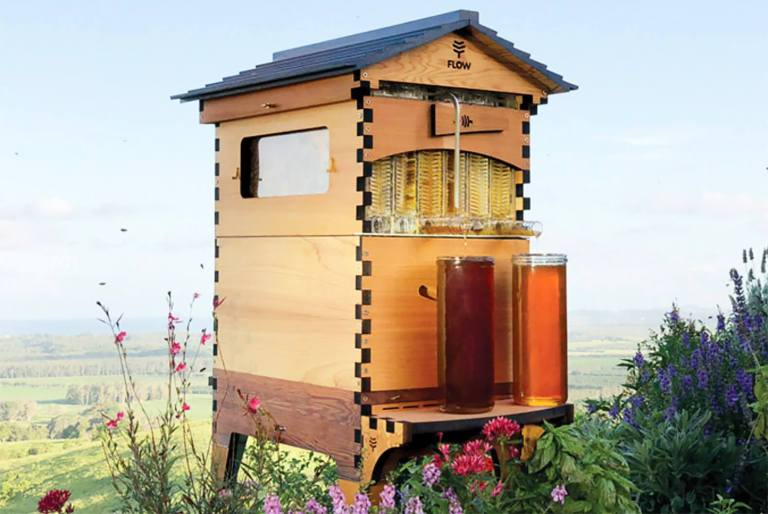 Father and Son Build 50,000 New Beehive Colonies Around the World 2
