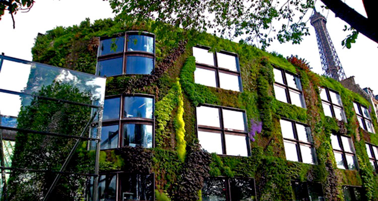 """Buildings Made of """"Moss-Growing Concrete"""" Could Remove More CO2 and Air Pollution than Thousands of Trees"""