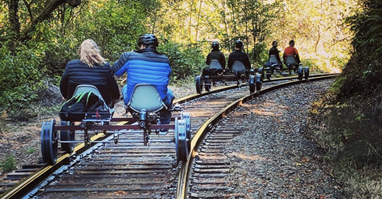 Pedal Through The California Redwoods For The Ultimate Outing